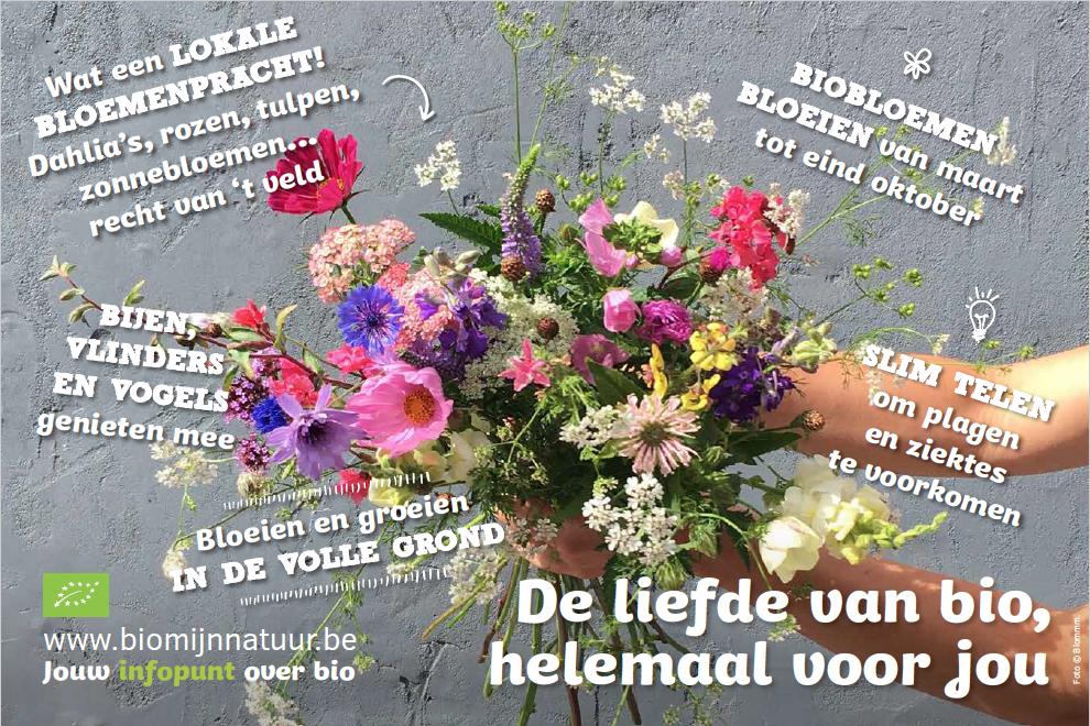 20190410-productweetjes-bloemen-DEF.png#asset:142379
