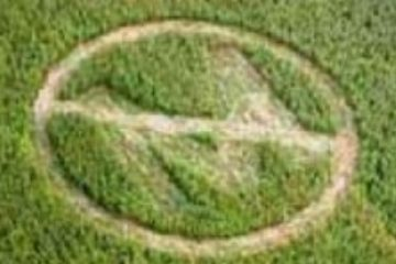 Monsanto No Monsanto