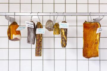 Vlees Boerderij Kobe Van Looveren