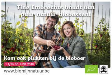 Bmn Kleinfruit Promobanner Web 1