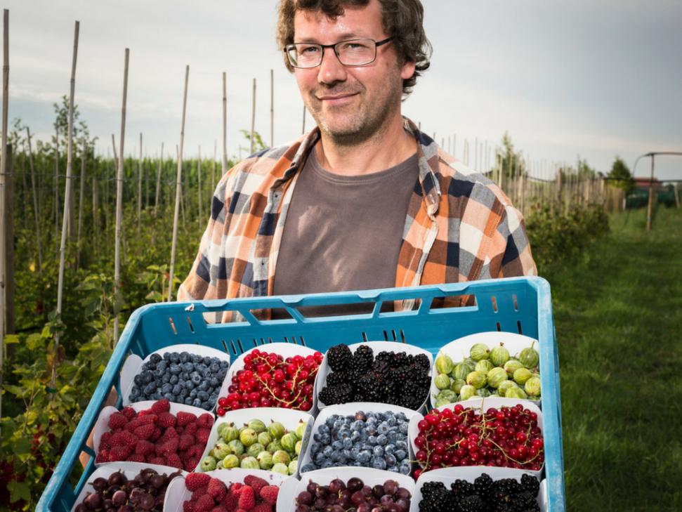 Rs17954 Portret Kleinfruit Wim Vandenberghe Liggend