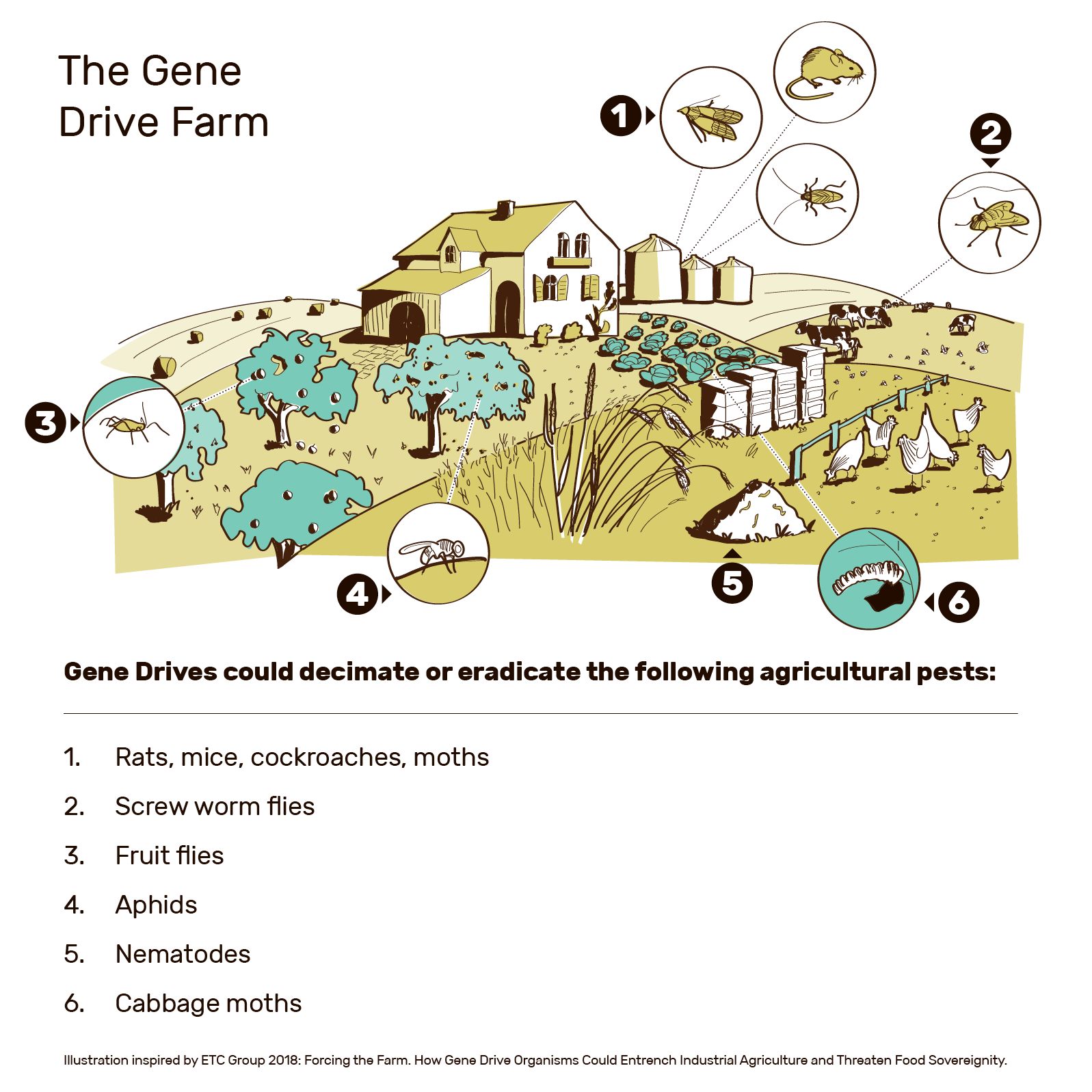 Gene Drives In Agriculture Annotated Eng