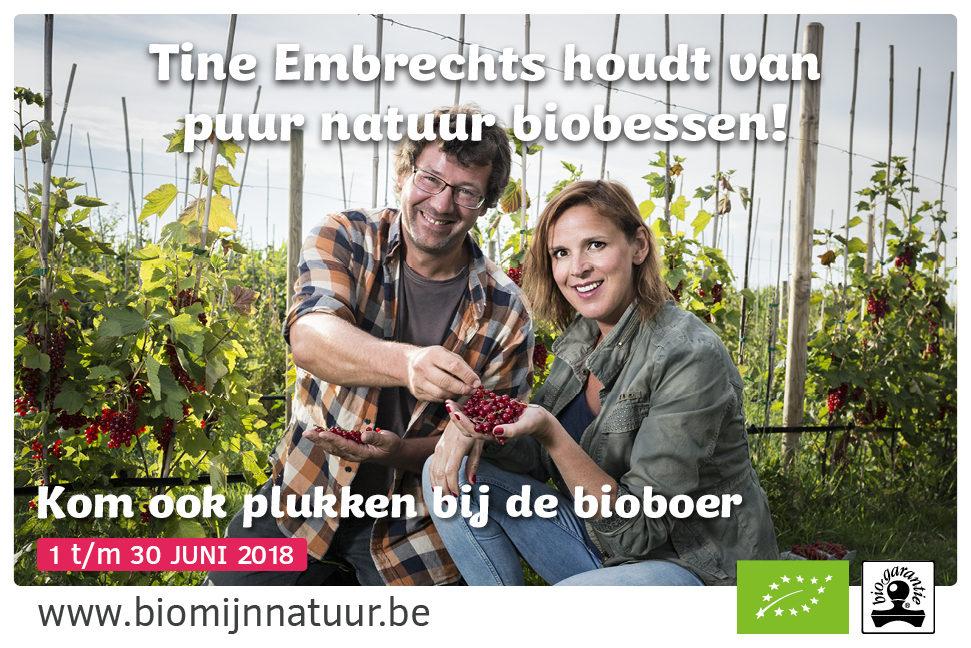 BMN_kleinfruit_promobanner_web_1.jpg#asset:93466:centeredColumnHeaderImage