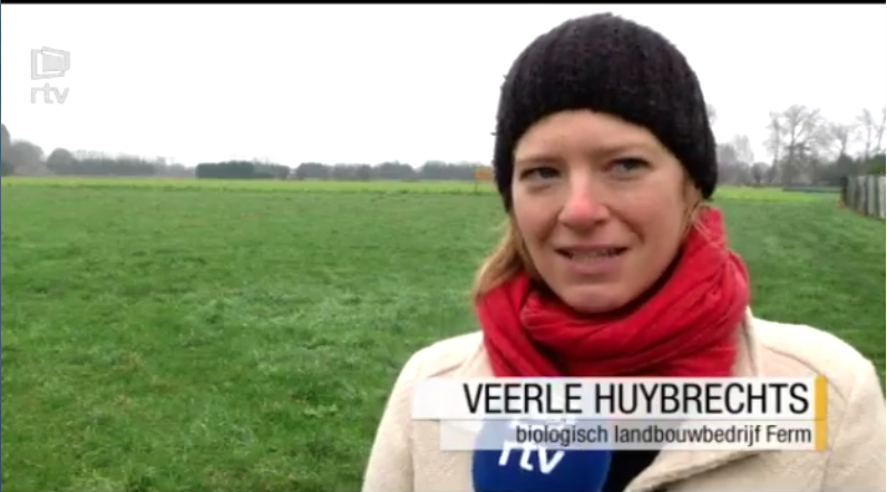 RTV - reportage