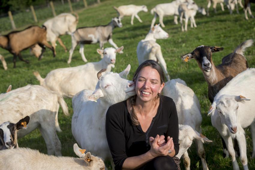 Frank Toussaint bij bioboerderij De Volle Maan Bio Mijn Natuur biologisch kaas melk yoghurt