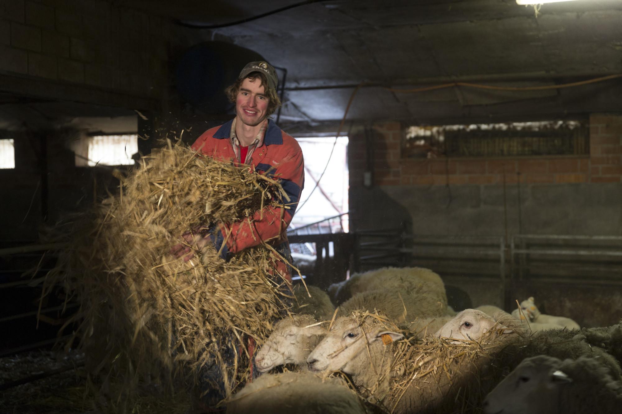 Frank Toussaint bij bioboerderij De Zwaluw bioboer bio mijn natuur