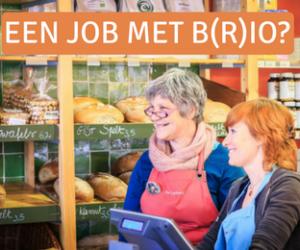 Jobs Met Brio Bmn 12 2017